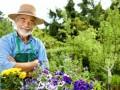 Regali per un pensionamento