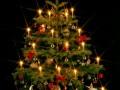 """L'Albero di Natale """"alternativo"""""""